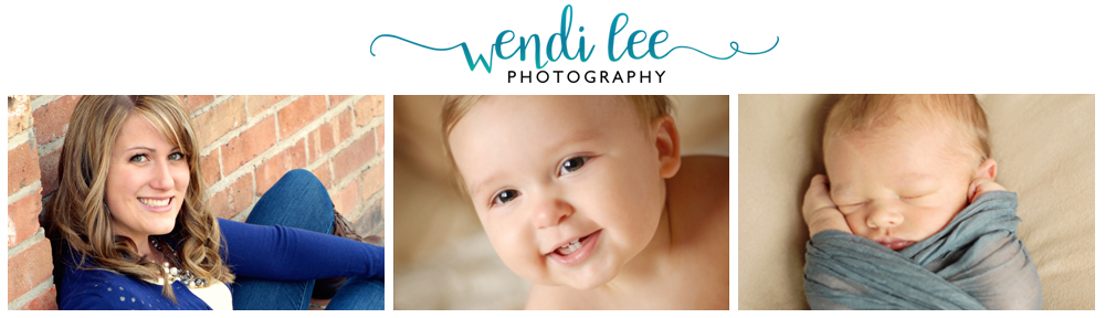 Wendi Lee Photography